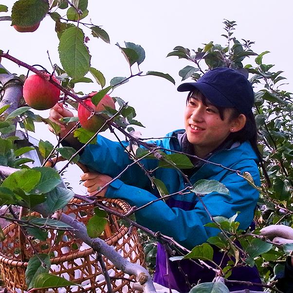 北海道大学 農学部 生物資源科学科