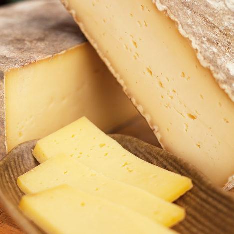 暮らしとともにあるチーズ<br />~ゼンキュウファーム~