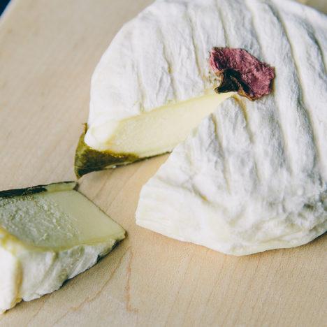 Vol.10 共働学舎新得農場 チーズ「さくら」