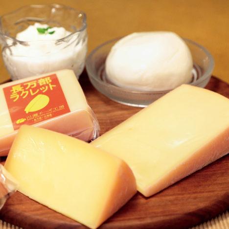 誠実なチーズ<br />~川瀬チーズ工房~