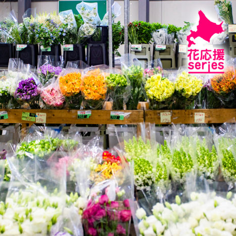 あなたに届け! 北海道育ちの花
