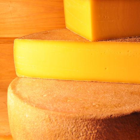仲間とともにあるチーズ<br />~村上牧場ミルク工房レプレラ~