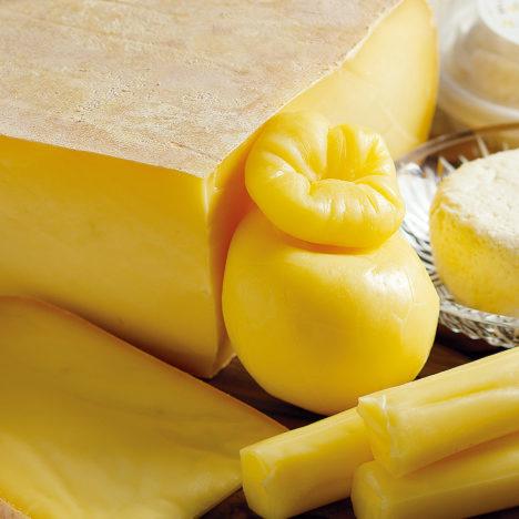 謙虚と研鑽の積み重ねのチーズ<br />~きた牛舎~