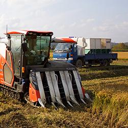 北海道NOW/もち米の収穫