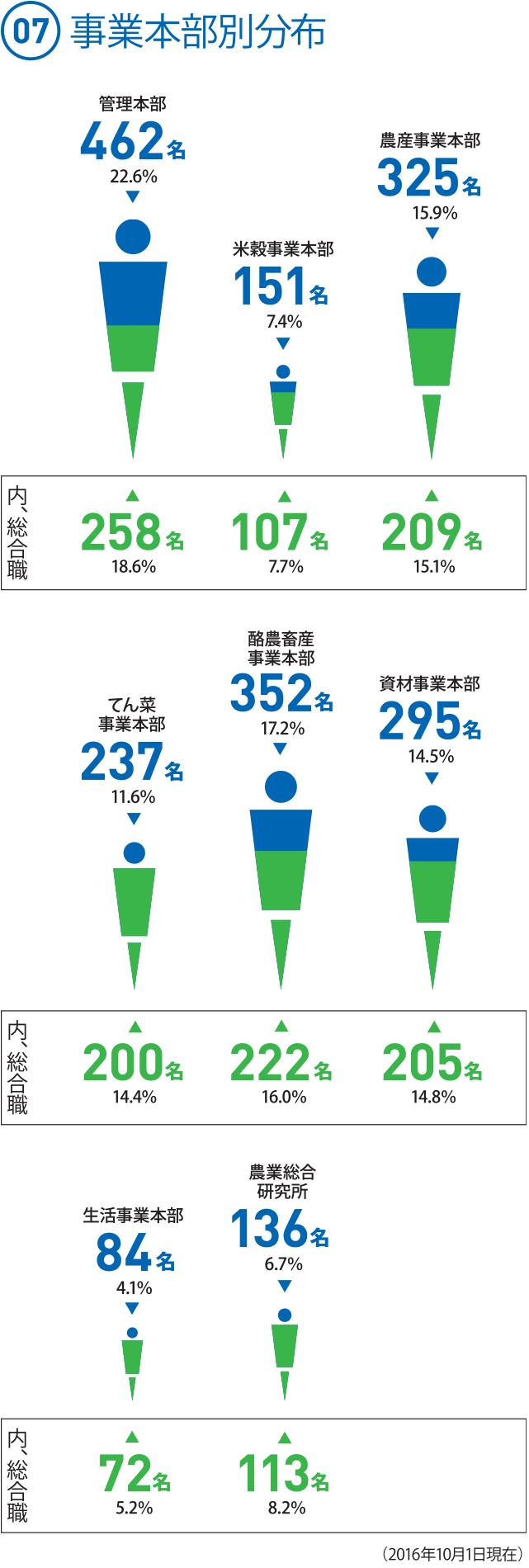 (07) 事業本部別分布 ◯管理本部 462名 22.6%[内、総合職]258名 18.6% ◯米穀事業本部 151名 7.4% [内、総合職]107名 7.7% ◯農産事業本部 325名 15.9% [内、総合職] 209名 15.1% ◯てん菜事業本部 237名 11.6% [内、総合職] 200名 14.4% ◯酪農畜産事業本部 352名 17.2% [内、総合職] 222名 16.0% ◯資材事業本部 295名 14.5%(14.44%) [内、総合職] 205名 14.8% ◯生活事業本部 84名 4.1% [内、総合職] 72名 5.2% ◯農業総合研究所 136名 6.7% [内、総合職] 113名 8.2%(2016.10.1現在)