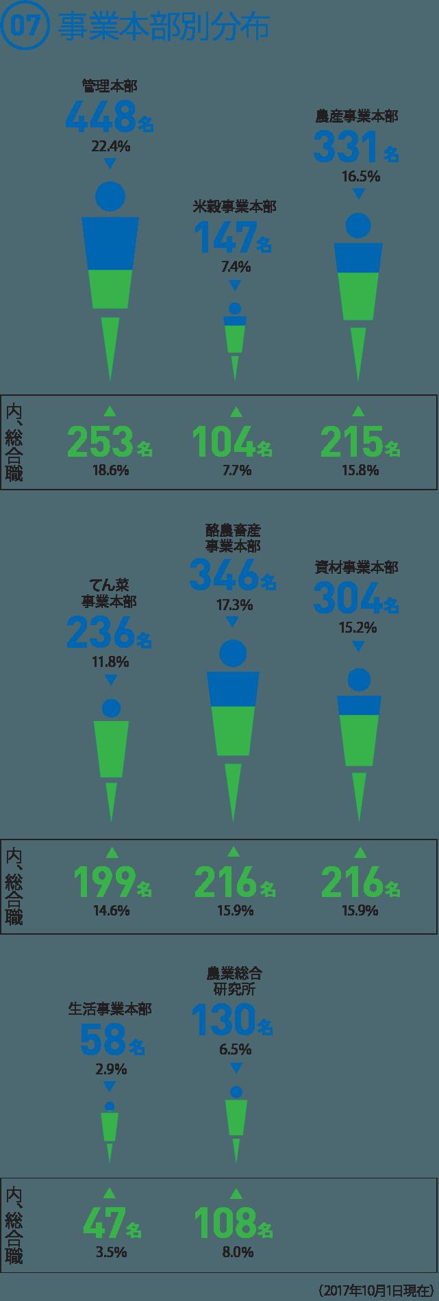 (07) 事業本部別分布  ◯管理本部 448名 22.4% [内、総合職]253名 18.6%  ◯米穀事業本部 147名 7.4% [内、総合職]104名 7.7%  ◯農産事業本部 331名 16.5% [内、総合職]215名 15.8%  ◯てん菜事業本部 236名 11.8% [内、総合職]199名 14.6%  ◯酪農畜産事業本部 346名 17.3% [内、総合職]216名 15.9%  ◯資材事業本部 304名 15.2% [内、総合職]216名 15.9%  ◯生活事業本部 58名 2.9% [内、総合職]47名 3.5%  ◯農業総合研究所 130名 6.5% [内、総合職]108名 8.0%(2017年10月1日現在)