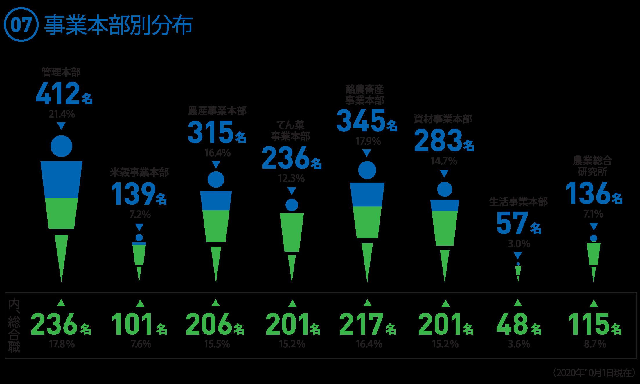 (07)事業本部別職員数  ○管理本部 412名 21.4% [総合職 236名 17.8%] ○米穀事業本部 139名  7.2% [総合職 101名 7.6%] ○農産事業本部 315名 16.4% [総合職 206名 15.5%] ○てん菜事業本部 236名 12.3% [総合職 201名 15.2%] ○酪農畜産事業本部345名 17.9% [総合職 217名 16.4%] ○資材事業本部 283名 14.7% [総合職 201名 15.2%] ○生活事業本部  57名  3.0% [総合職 48名 3.6%] ○農業総合研究所 136名  7.1% [総合職 115名 8.7%]